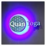 東京でマタニティヨガならLAVAの【Quan Yoga(クオンヨガ)銀座店】1か月通った感想・クチコミ